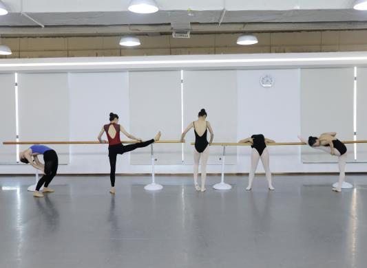 北京舞蹈学院每年录取多少人?